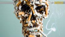 AANTAL ROKERS WERELDWIJD DAALT