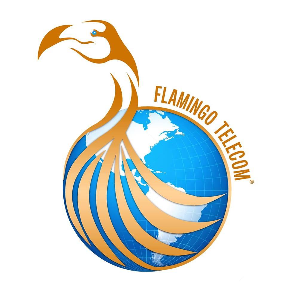 Flamingo Telecom