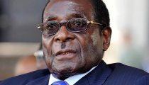 WHO TREKT BENOEMING ROBERT MUGABE TOT GOODWILL-AMBASSADEUR IN